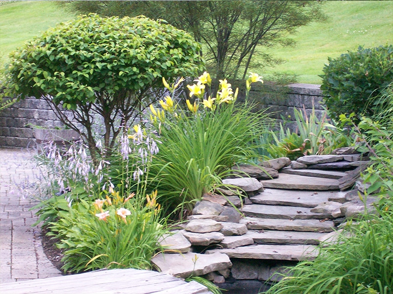 stone steps on garden path